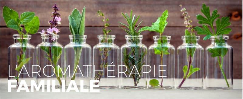 formation en aromatherapie